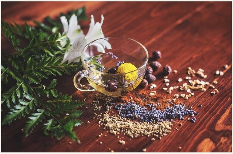Por que o chá é um dos maiores aliados no emagrecimento saudável?