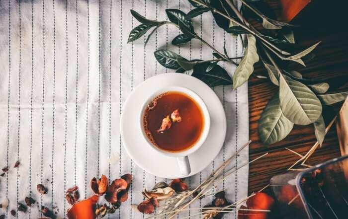 Confira algumas vantagens do Chá Mix Brasil para o melhor funcionamento do seu organismo