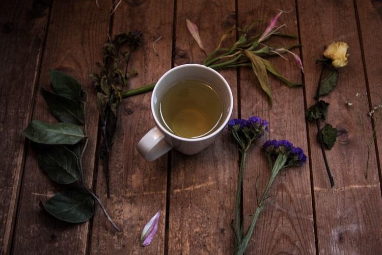 Chá termogênico: Conheça os 6 ingredientes do Chá Mix Brasil