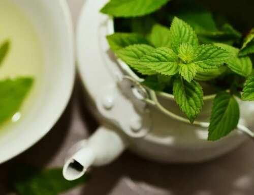 Conheça os benefícios da hortelã e como inserir na dieta
